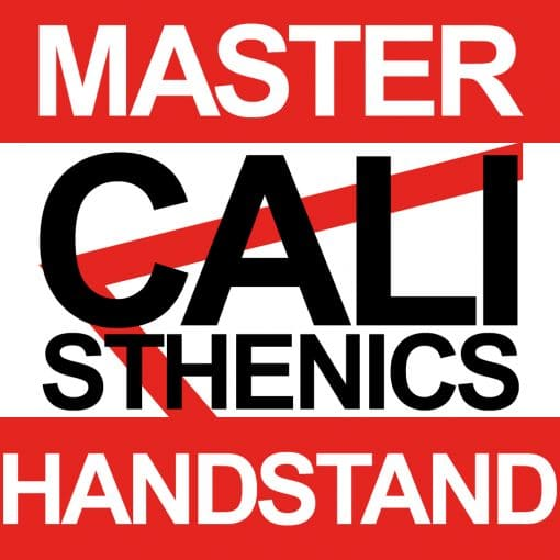 master calisthenics verticale
